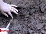 Dua-jenis-koin-baru-yang-ditemukan-di-Banyuwangi-3